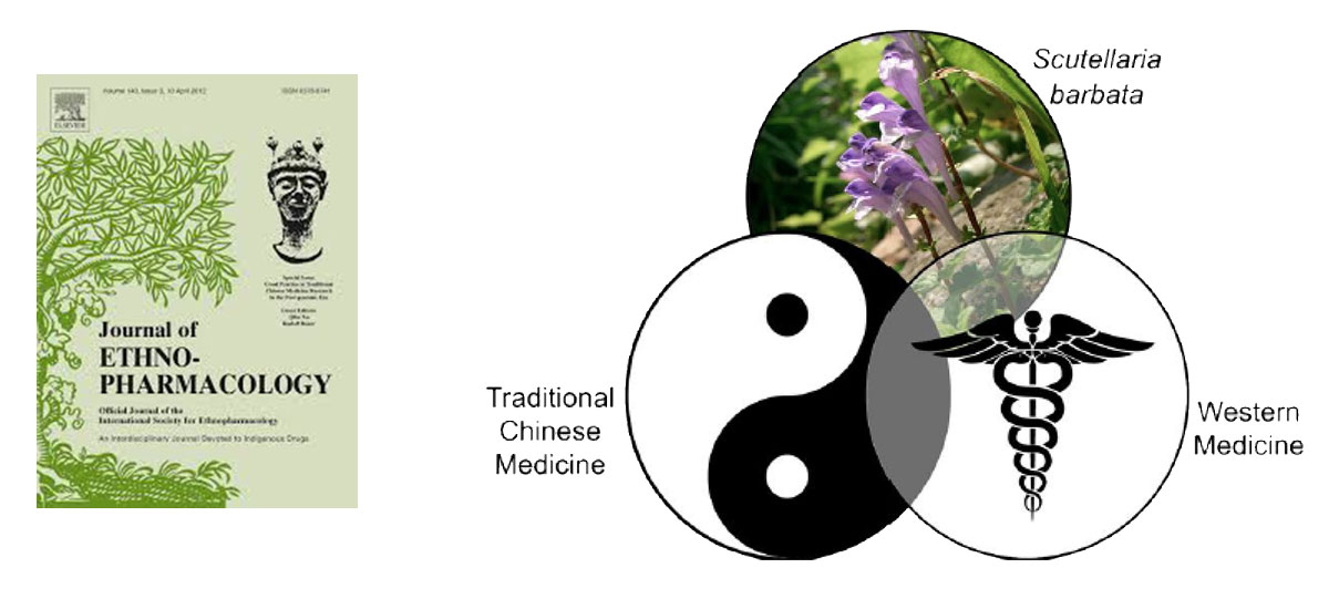 the integration of chinese medicine into Traditional chinese medicine is an important complementary therapy in the  to  promote the integration, regulation and supervision of traditional medicine.